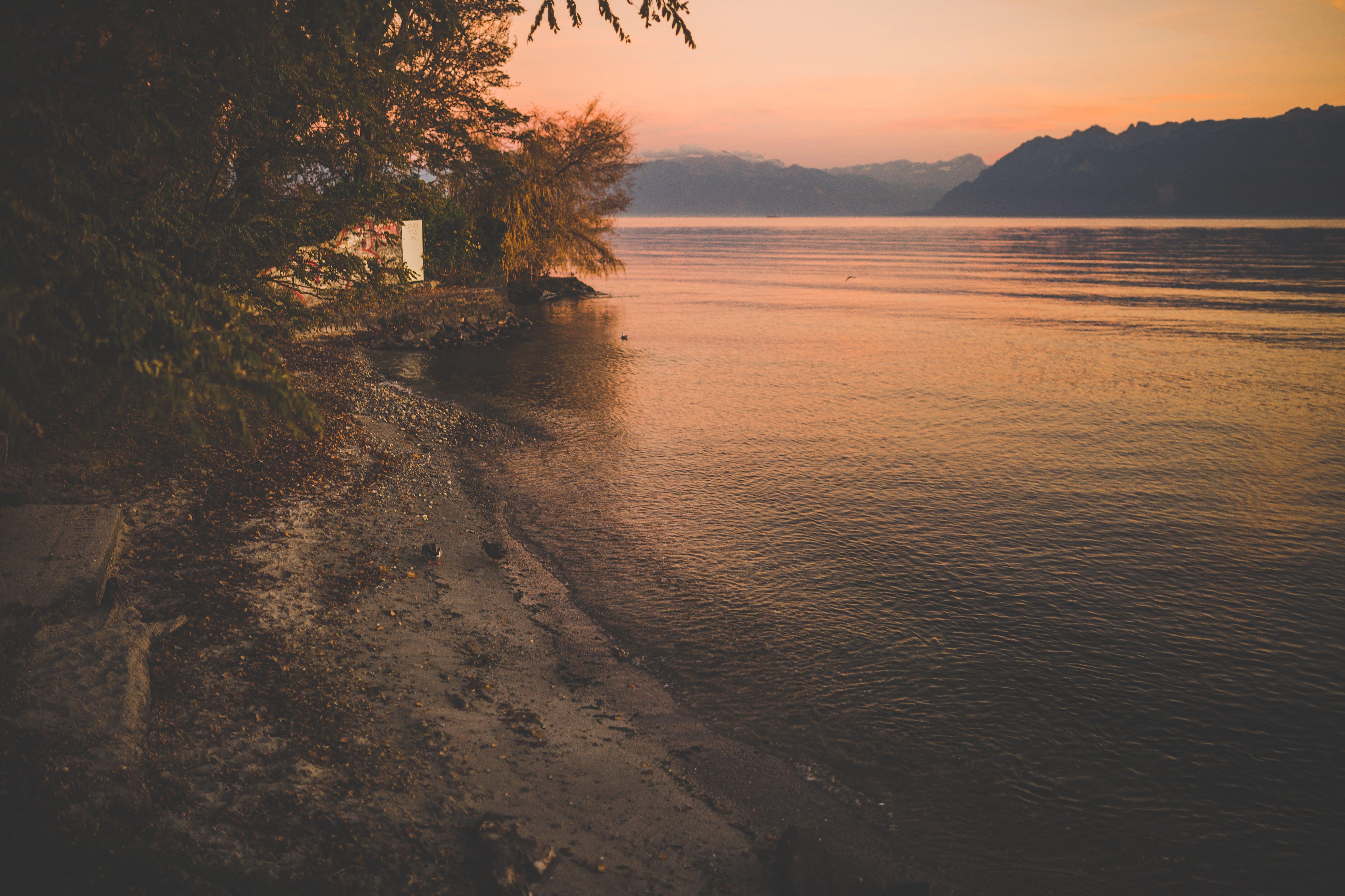 Free stock photo of lake, sunset