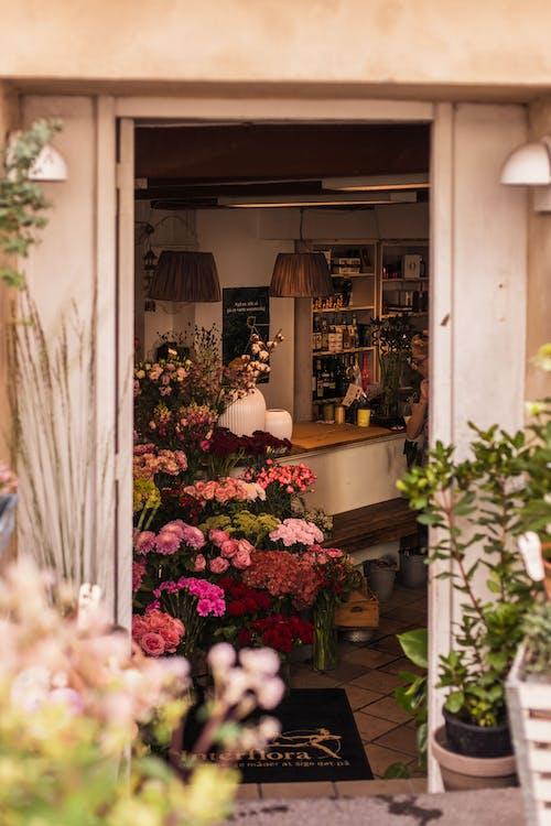 一束花, 什錦的, 入口, 天井 的 免费素材照片