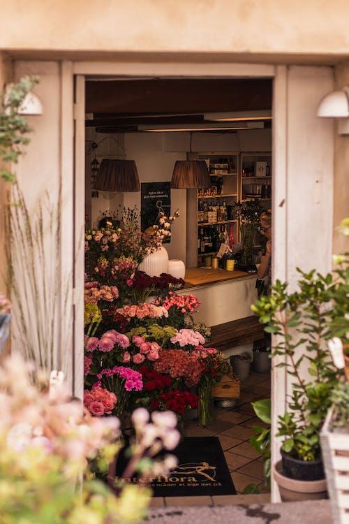 一束花, 什錦的, 入口