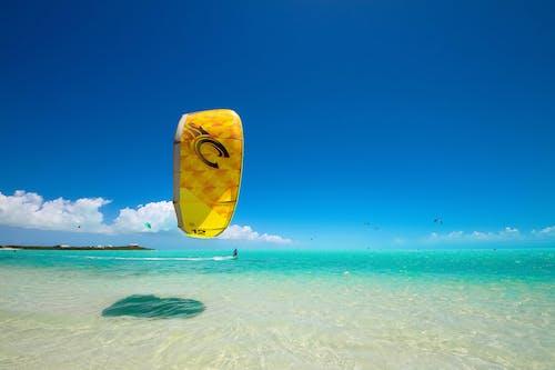 海洋, 海灘, 风筝冲浪 的 免费素材照片