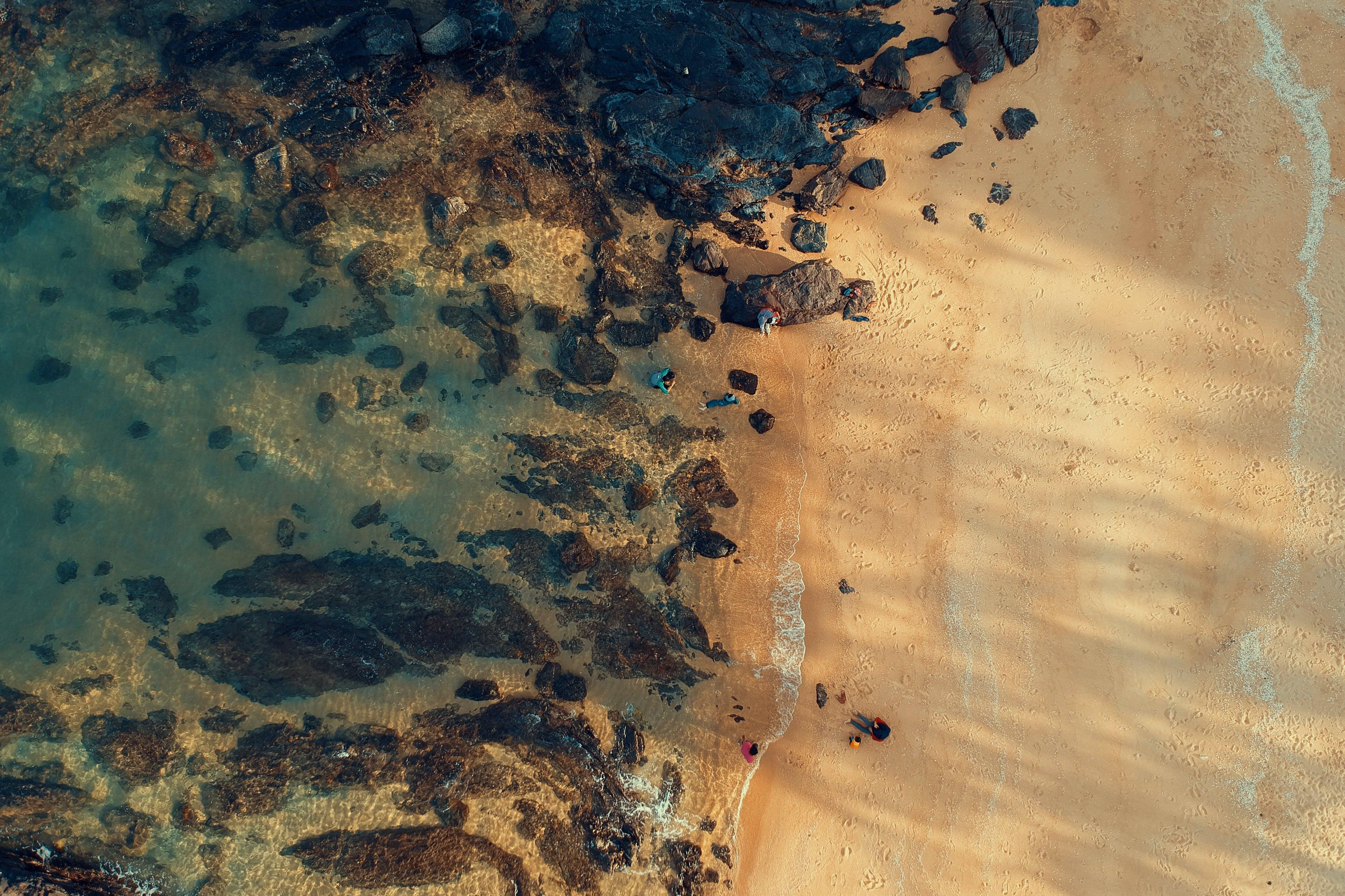 Bird's-eye-view Photography of Beach