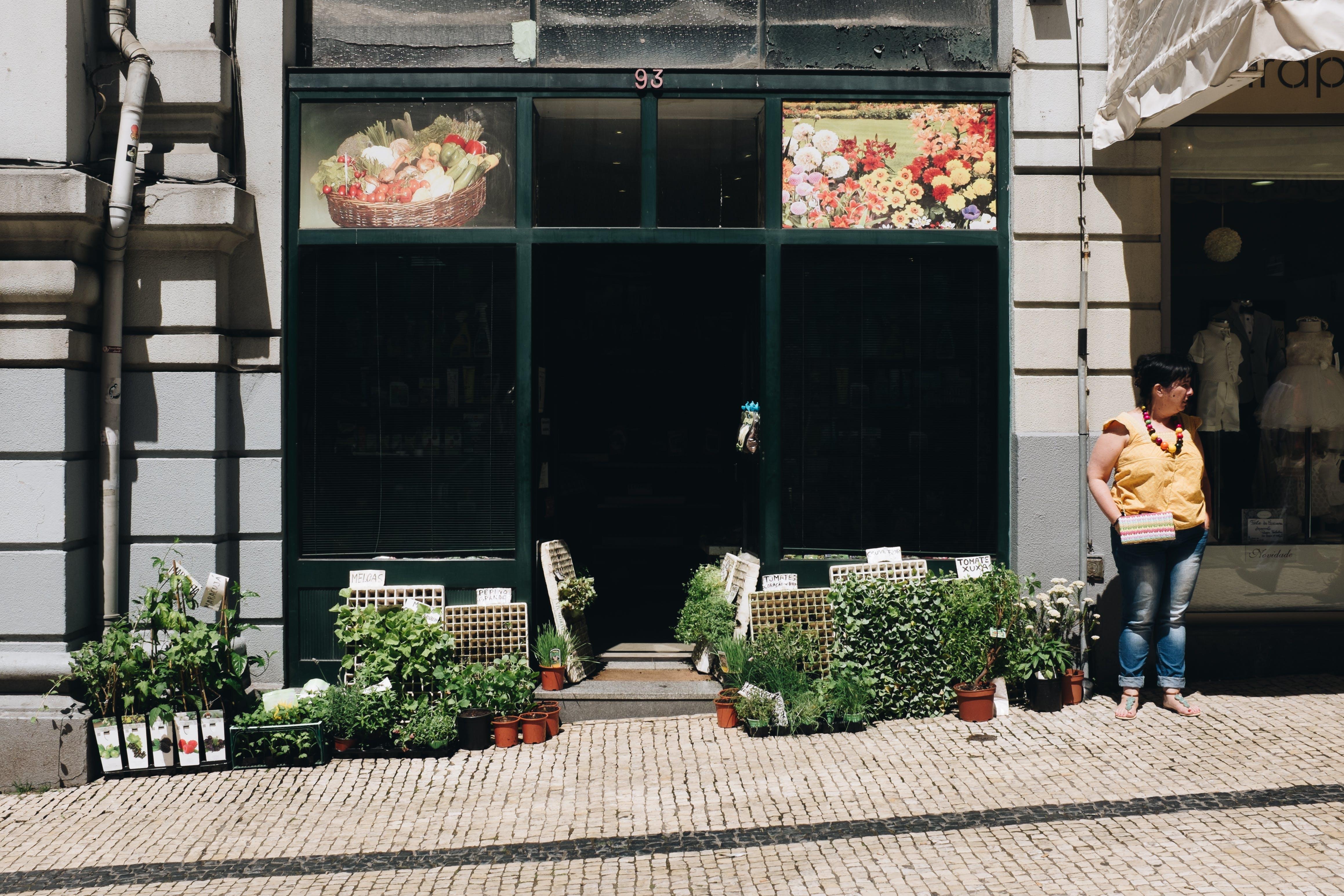 Gratis lagerfoto af arkitektur, blomster, bygning, dagslys