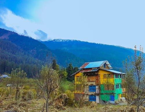 Foto d'estoc gratuïta de bella casa, bellesa natural, bonic, bosc