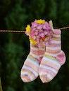 flowers, hanging, socks