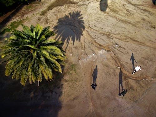 Ilmainen kuvapankkikuva tunnisteilla aavikko, hiekka, ihmiset, ilmakuva
