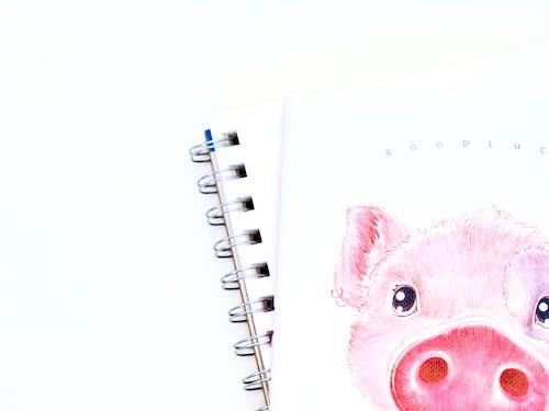 Foto stok gratis babi, buku agenda, dalam ruangan, kesenian