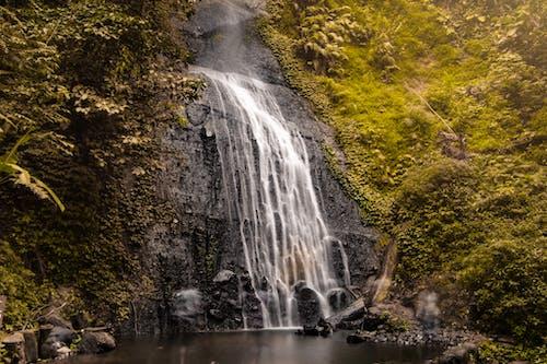 Ilmainen kuvapankkikuva tunnisteilla idyllinen, kivet, luonto, metsä