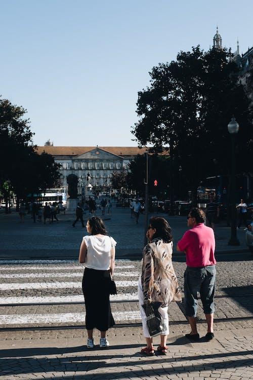 Základová fotografie zdarma na téma chodci, denní světlo, lidé, policie