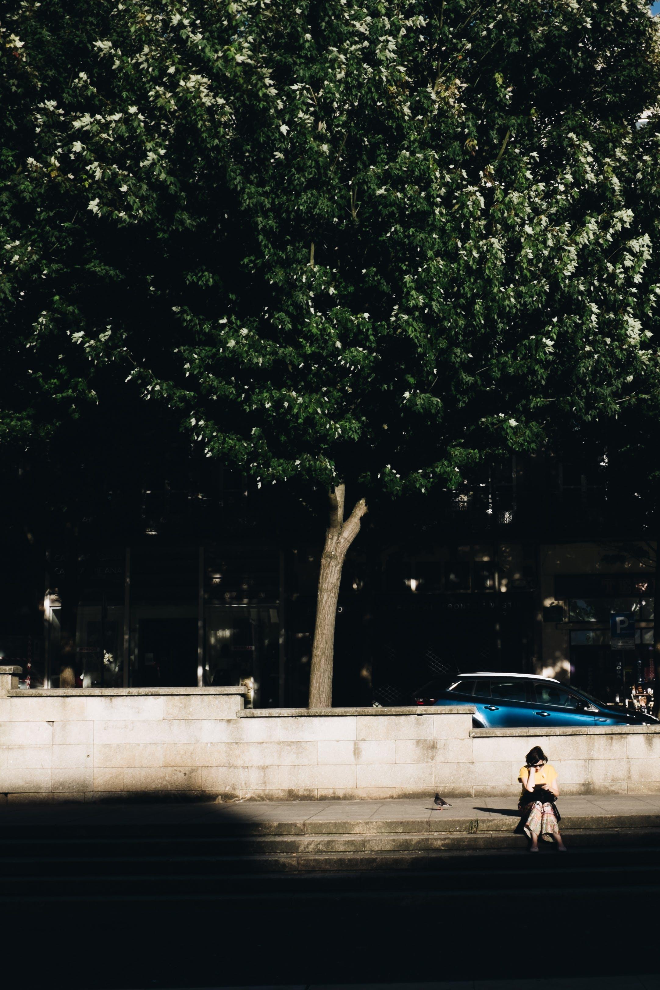 Gratis lagerfoto af dagslys, fortov, gade, kvinde