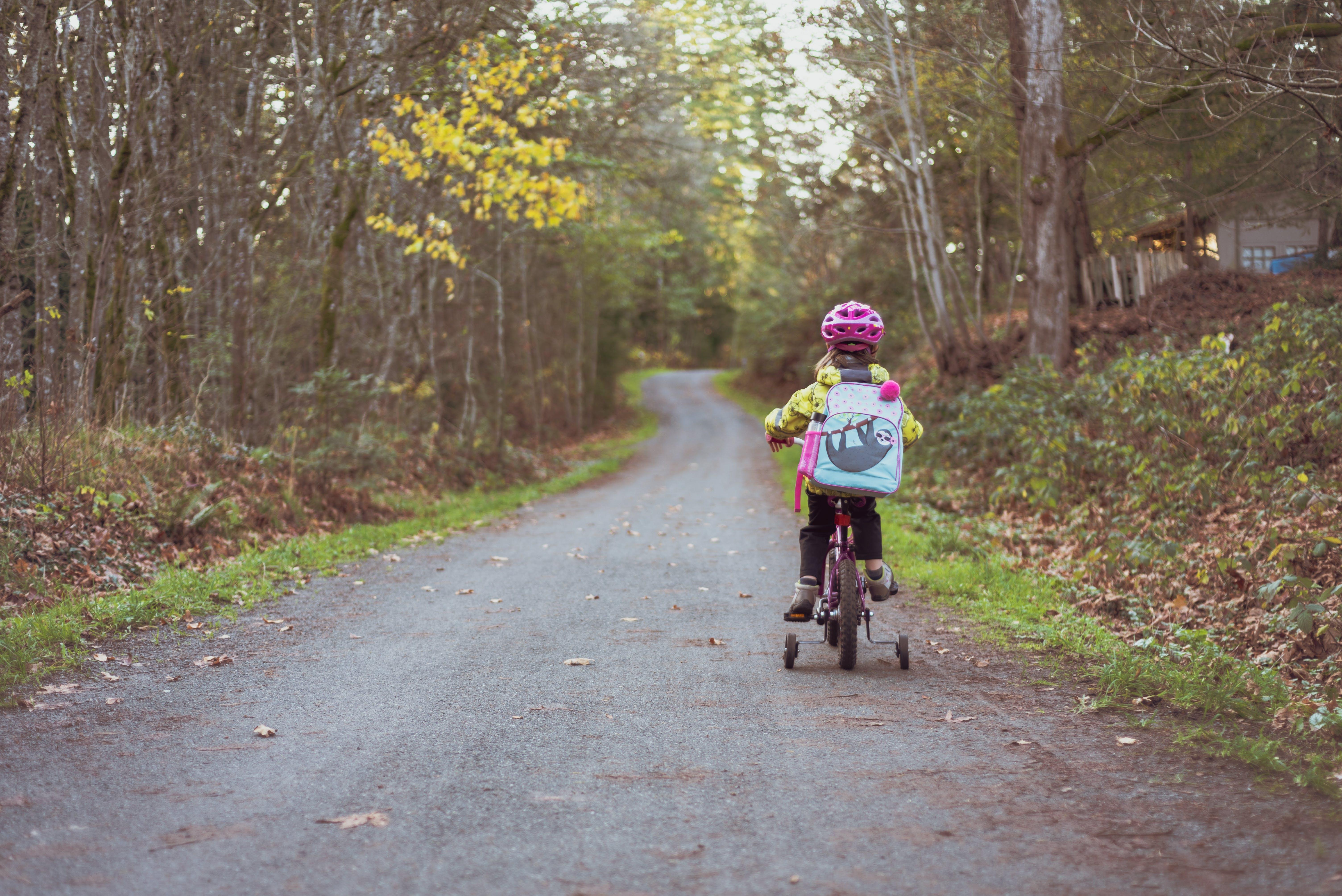 Darmowe zdjęcie z galerii z bezpieczeństwo, droga, drzewa, dziecko
