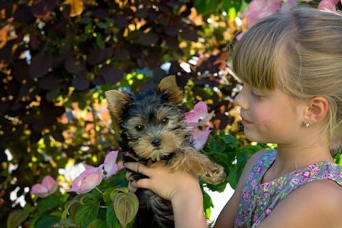 Ingyenes stockfotó aranyos, boldogság, fiatal, gyermek témában