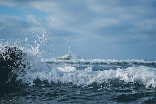 Základová fotografie zdarma na téma cákání, kanárský, mávat, moře
