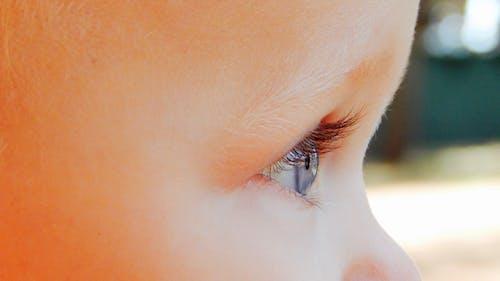 Fotobanka sbezplatnými fotkami na tému bábätko, beloch, bočný pohľad, detailný záber