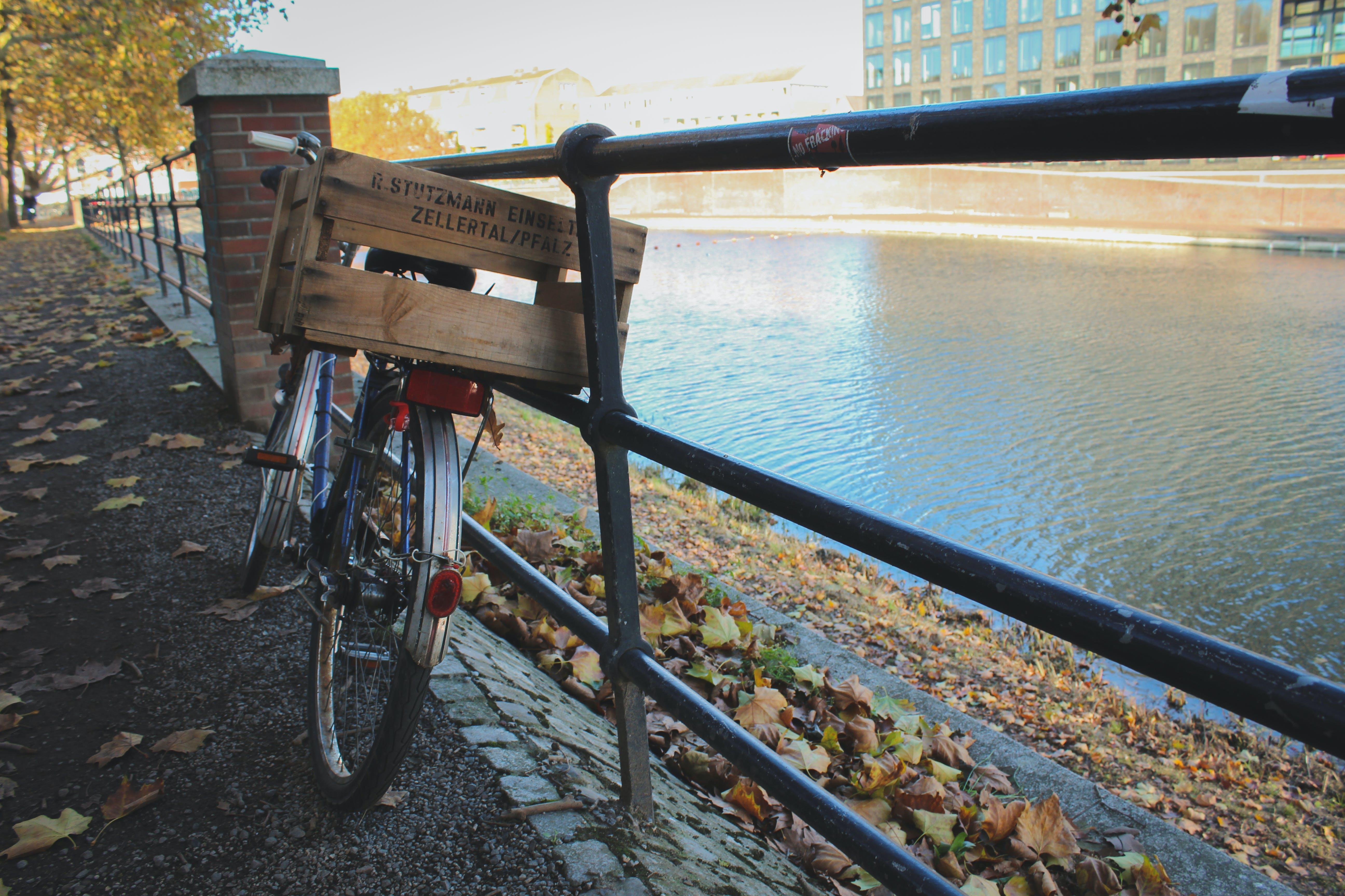 Kostenloses Stock Foto zu autumn, autumn colors, bike, natural