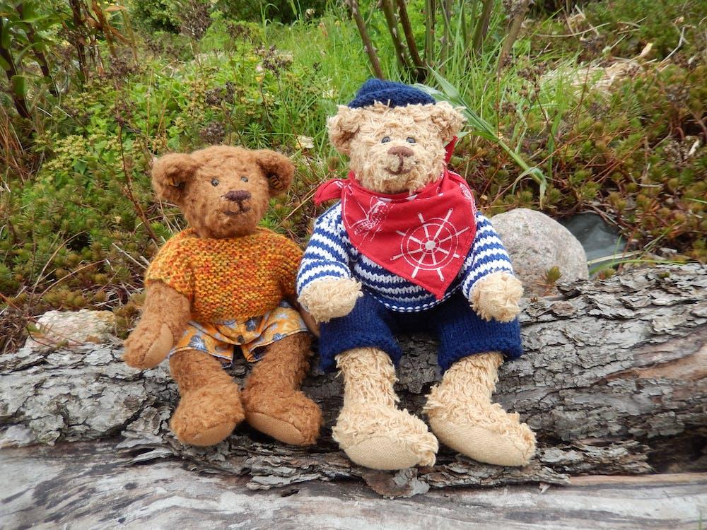 2 Brown Teddy Bear
