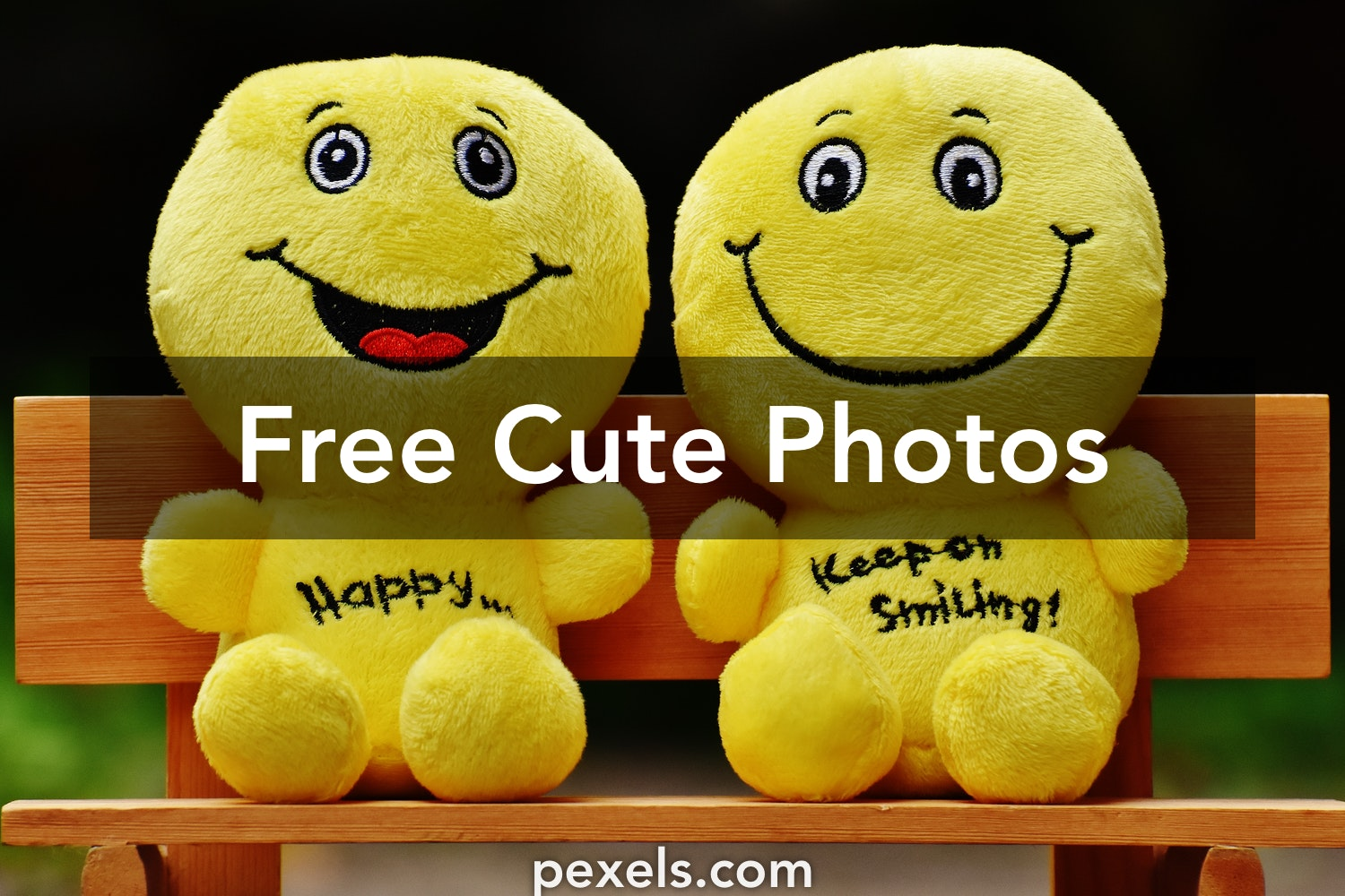 Cute pictures pexels free stock photos voltagebd Choice Image