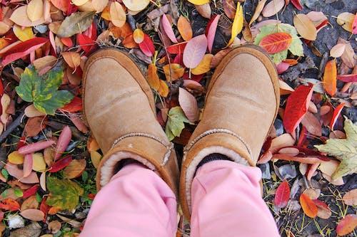 Základová fotografie zdarma na téma barevný, chodidla, holinky, obuv