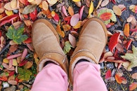 feet, shoes, leaves