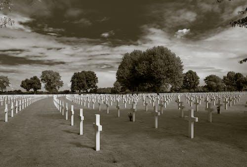 Kostnadsfri bild av krig, kyrkogård, margraten, minnesmärke