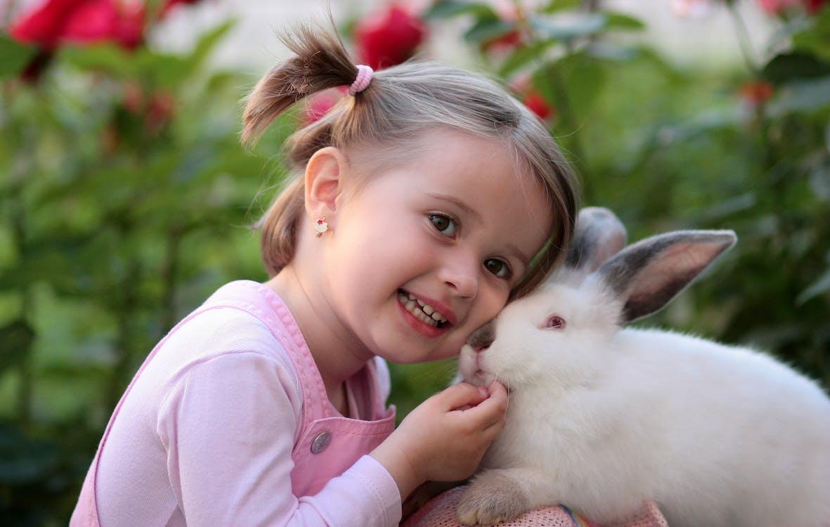 Girl Holding White Rabbit during Daytime