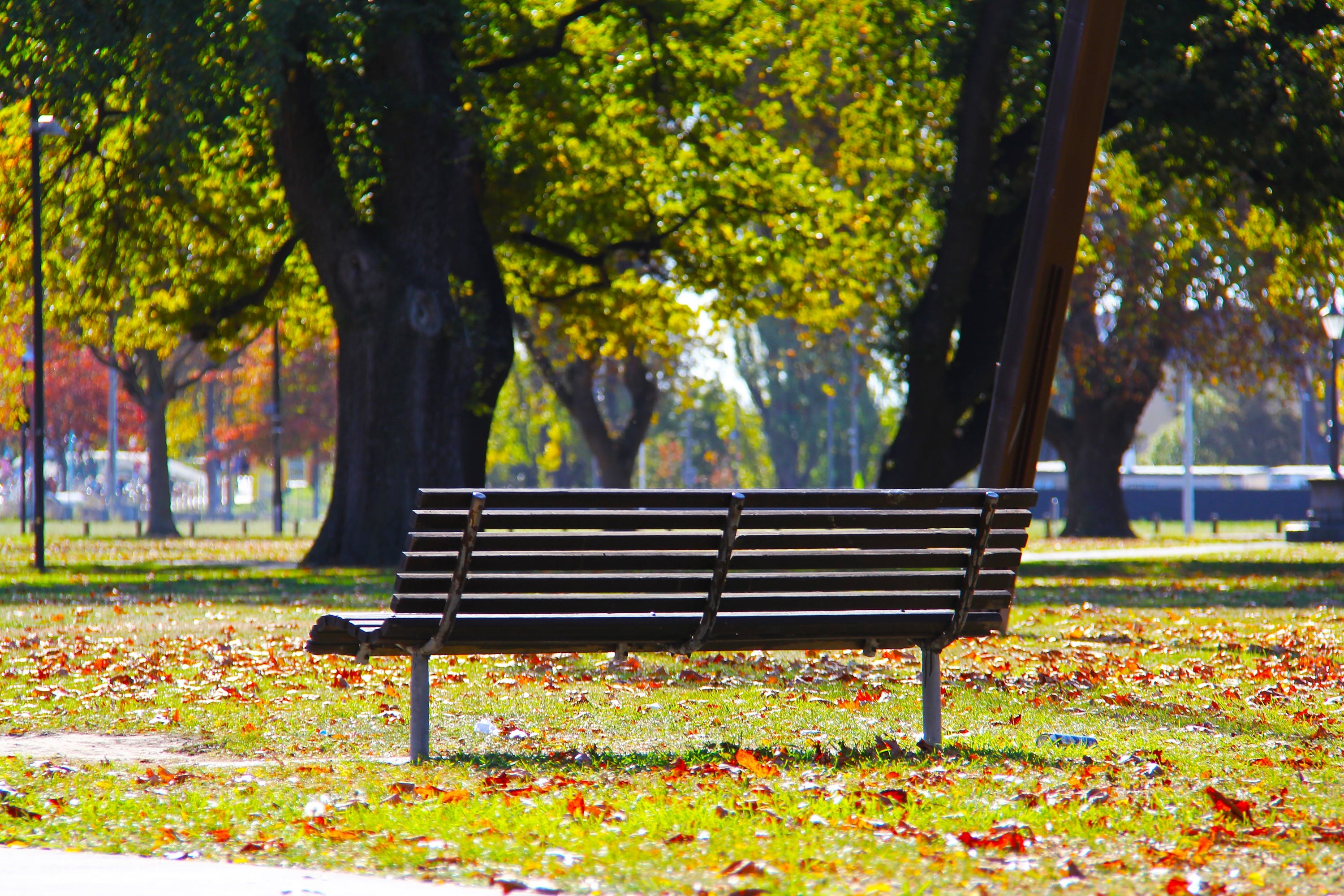 A park bench, like the one you can approach people on.