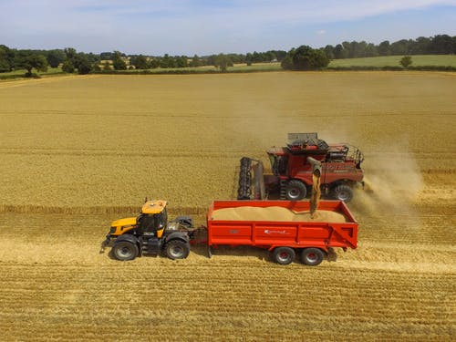 Free stock photo of Unloading Corn - Harvest Time