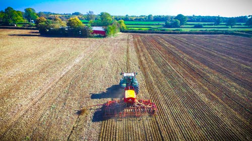 Free stock photo of Planting Corn for Next Years Harvest