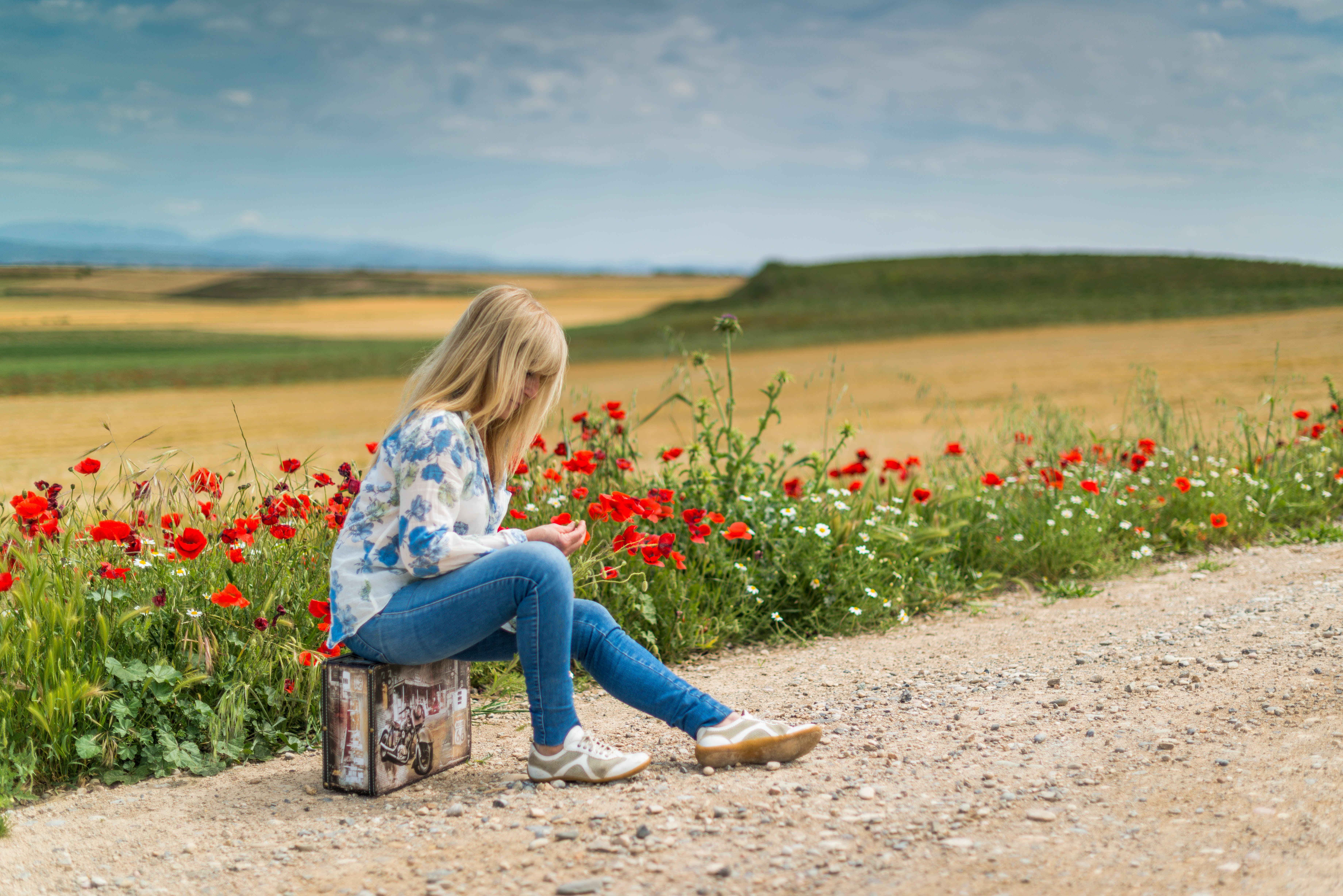 Girl Near Red Petal Flowers at Daytime