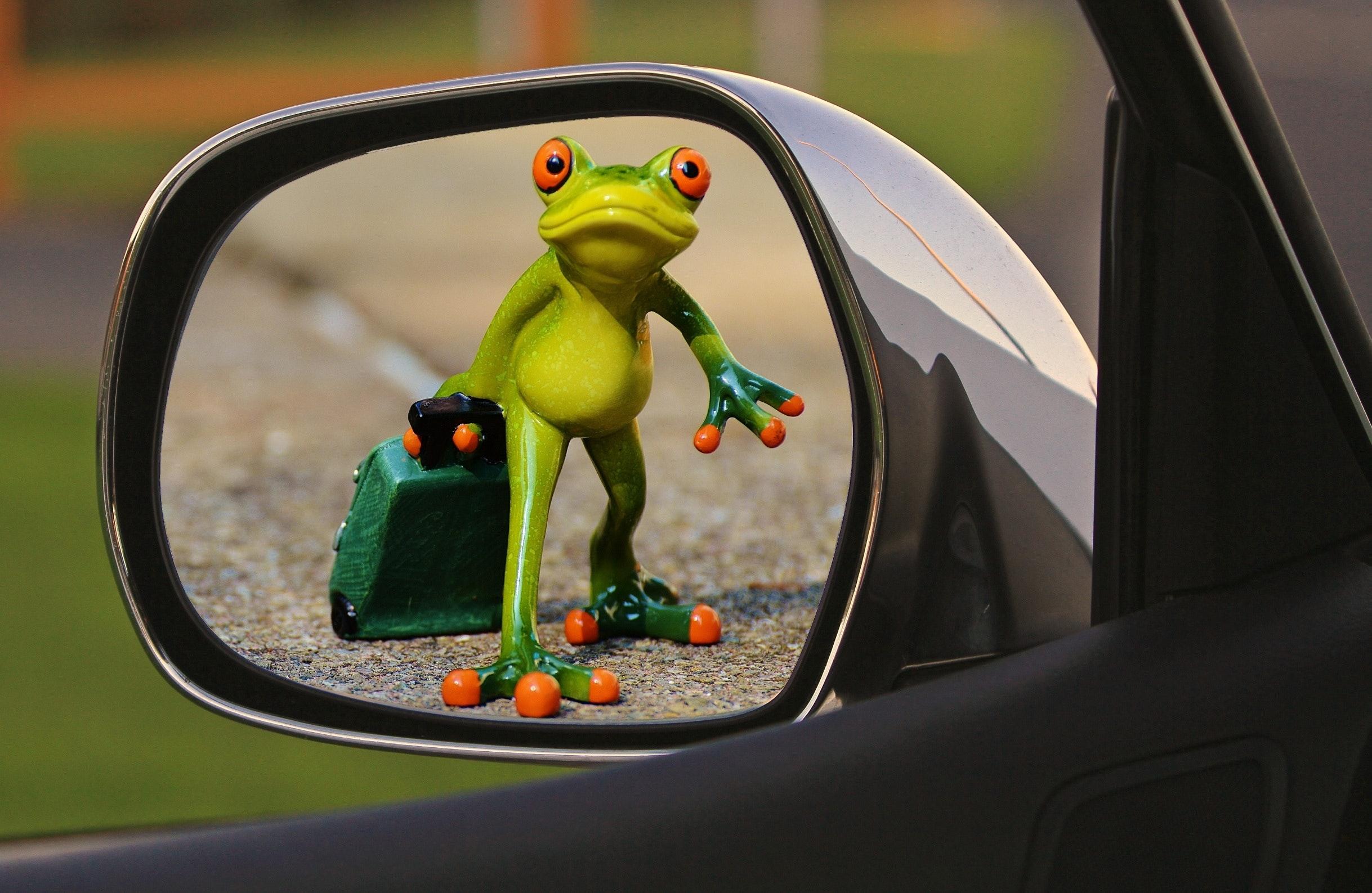 Znalezione obrazy dla zapytania mirror funny