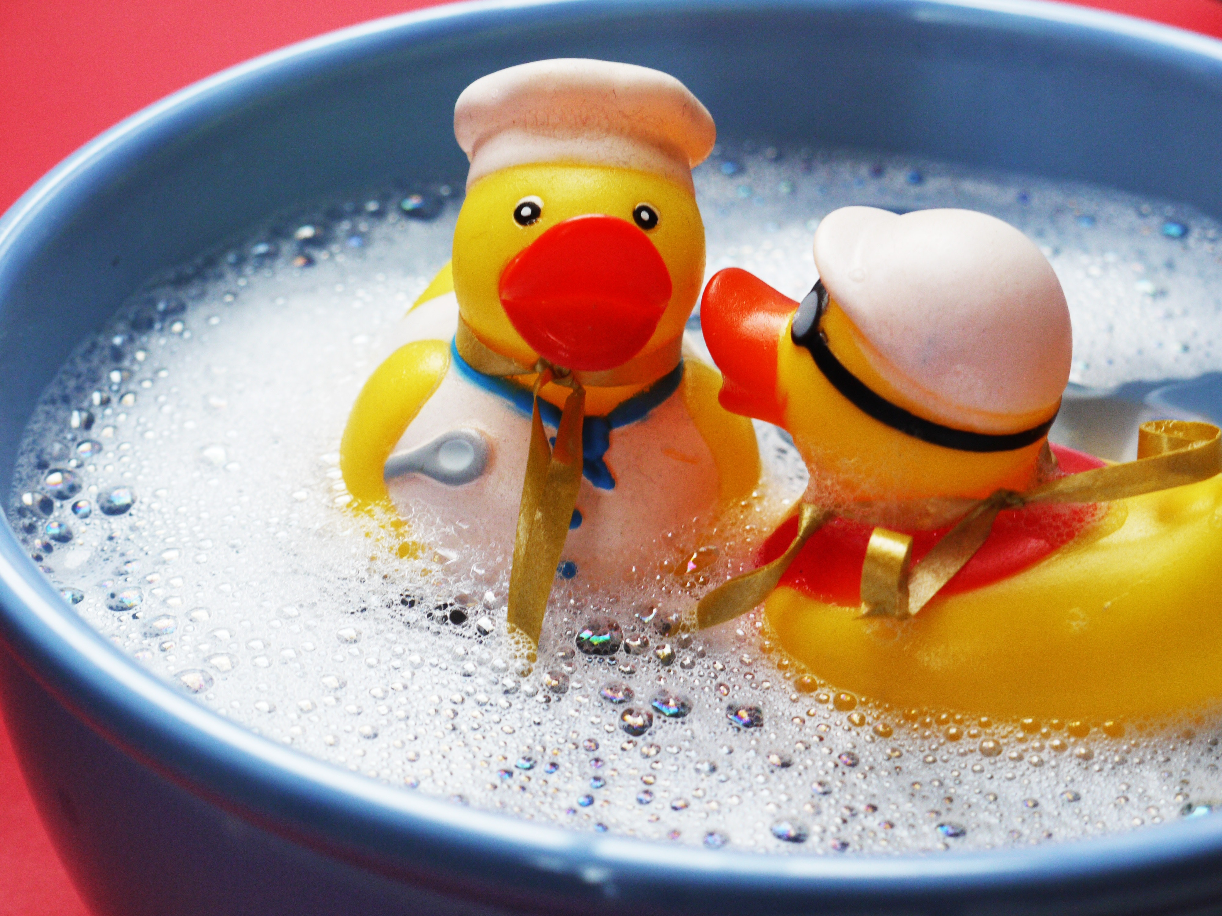2 Rubber Ducky On Blue Ceramic Bowl 183 Free Stock Photo