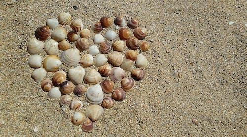 岸邊, 心, 心臟, 愛 的 免費圖庫相片