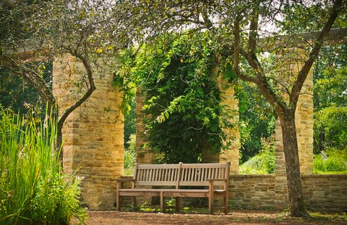 Empty Bench At A Garden