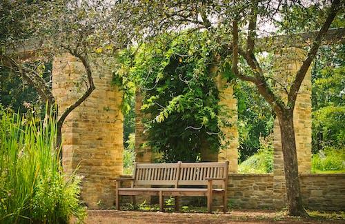 Ilmainen kuvapankkikuva tunnisteilla arkkitehtuuri, aurinko, istuin, kasvit
