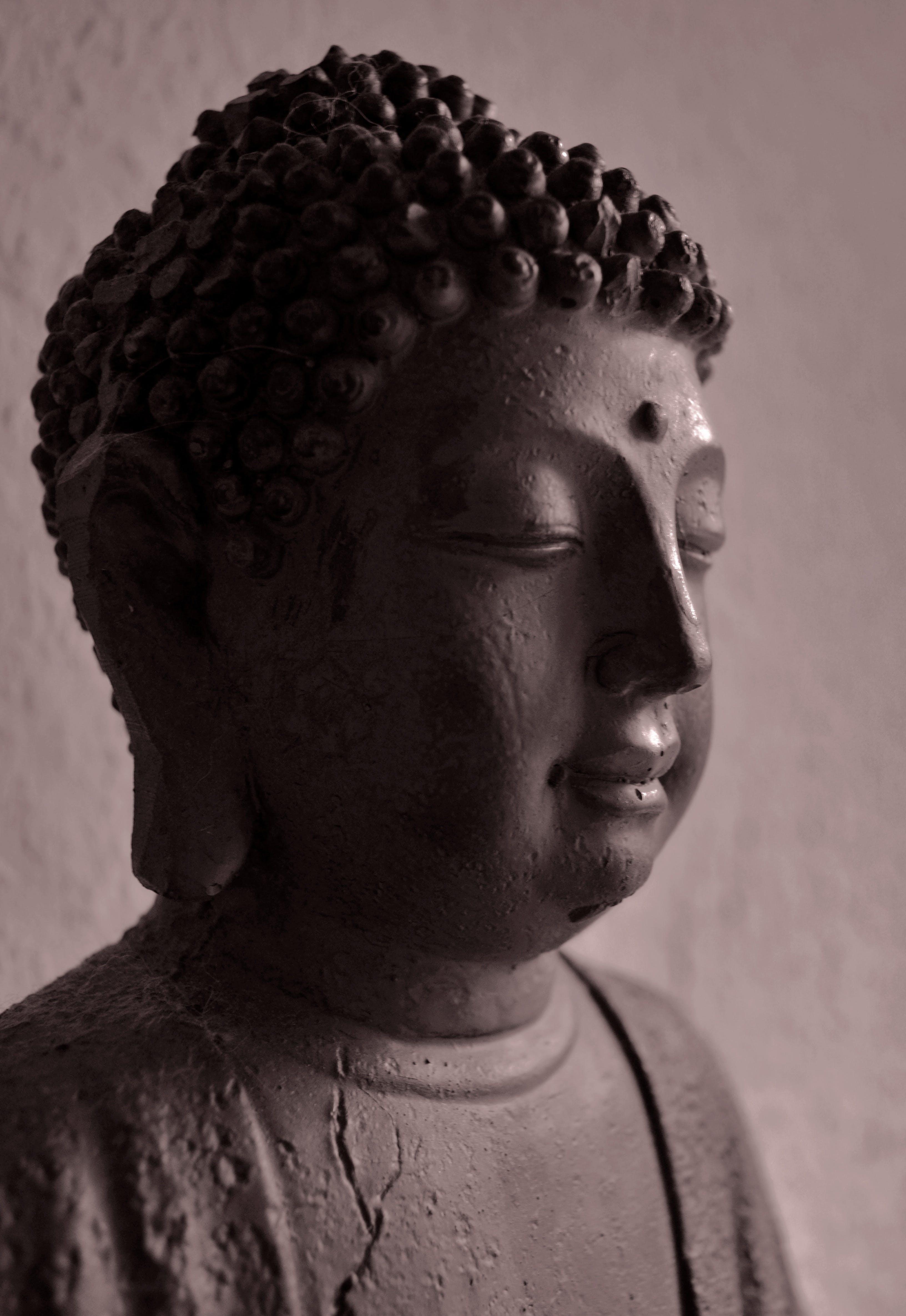 Free stock photo of statue, sculpture, religion, asia