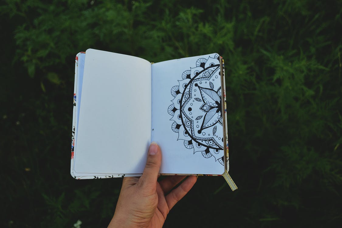 Person Holding Open Book with Floral Drawing