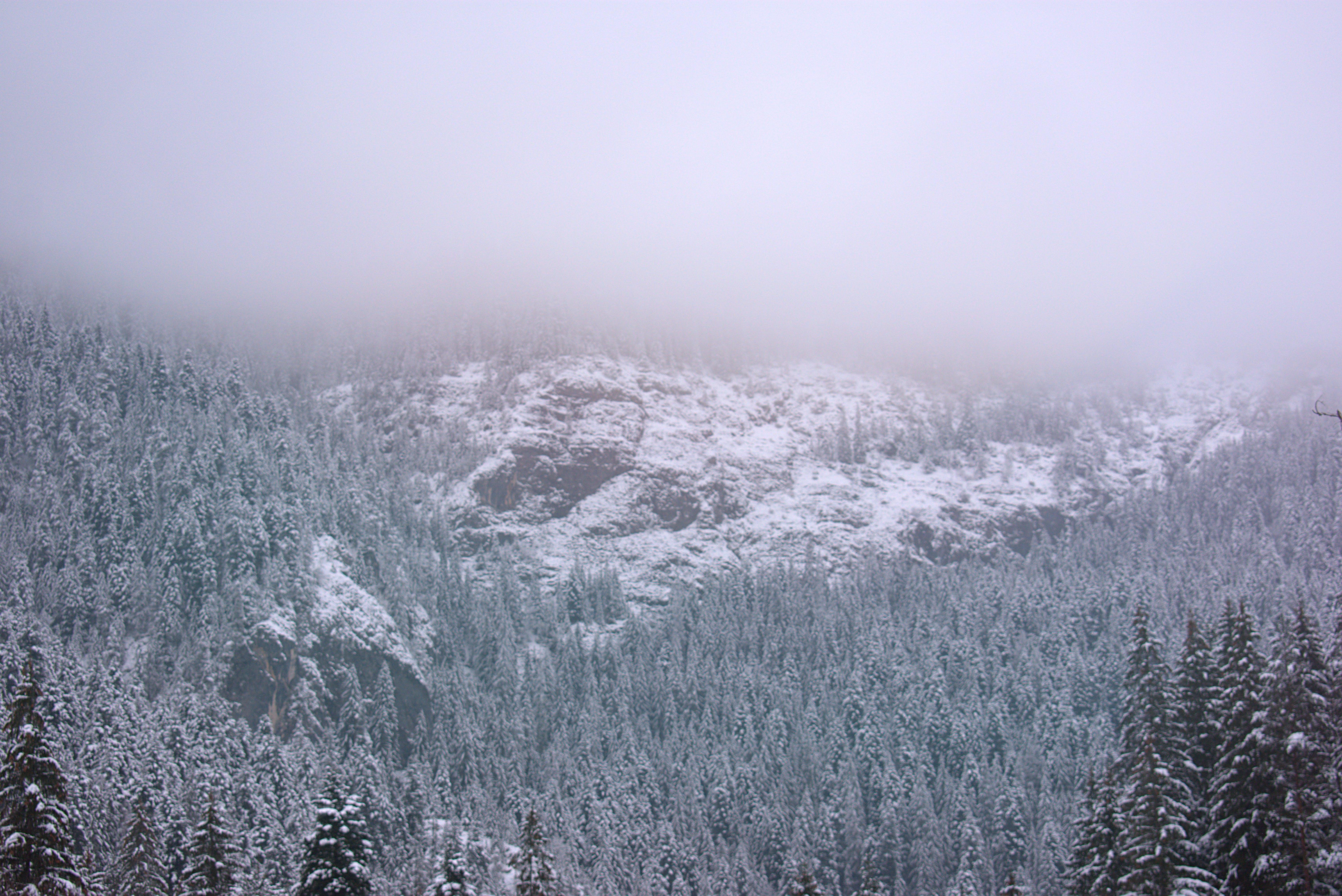 ağaçlar, buz tutmuş, dağ