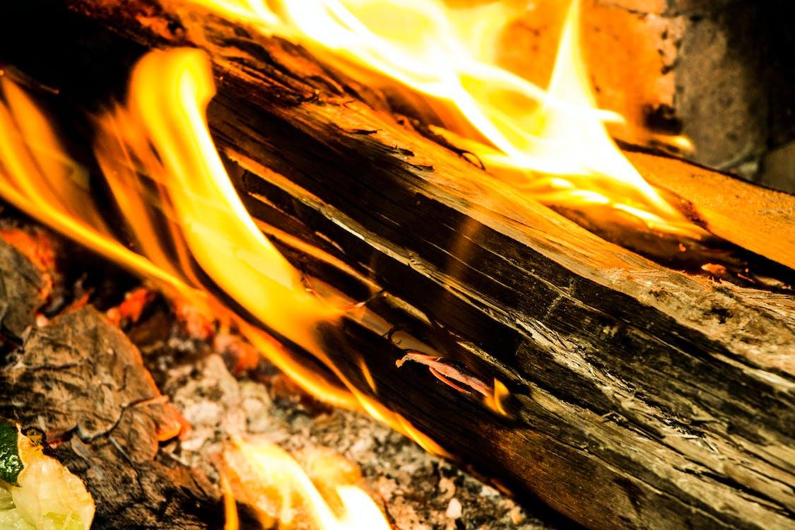 barbecue, bonfire, burn