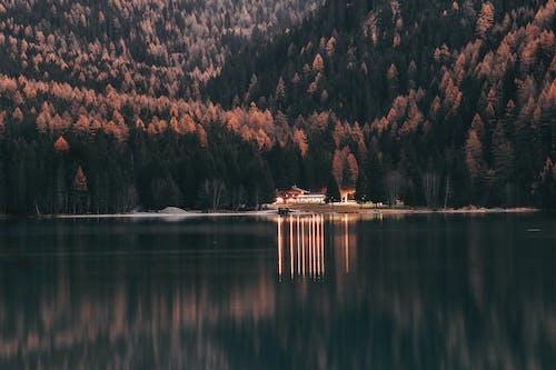 Ảnh lưu trữ miễn phí về ánh sáng ban ngày, bờ hồ, cây, danh lam thắng cảnh