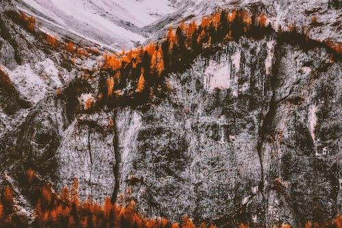 Δωρεάν στοκ φωτογραφιών με από πάνω, βουνό, γραφικός, εναέρια λήψη