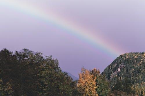 Ingyenes stockfotó ég, festői, hegy, látványos témában
