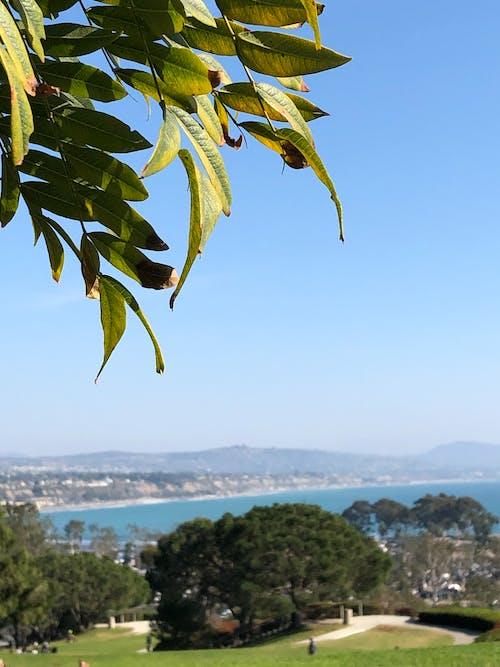 Free stock photo of beach, beach view, park