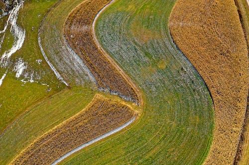คลังภาพถ่ายฟรี ของ กล้องโดรน, กลางแจ้ง, การเกษตร, ชนบท