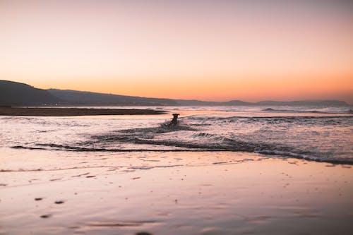 akşam, dağ, dalgalar, deniz içeren Ücretsiz stok fotoğraf