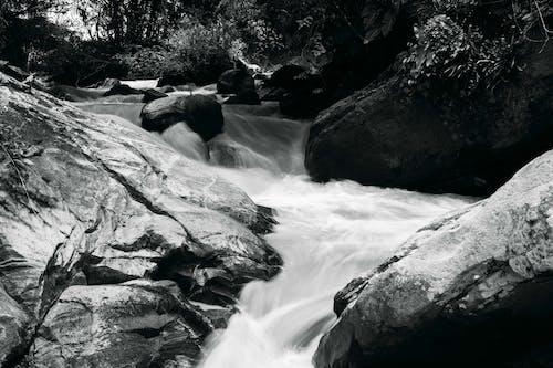 瀑布 的 免費圖庫相片