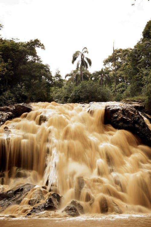 cachoeira, cascata, exposição longa