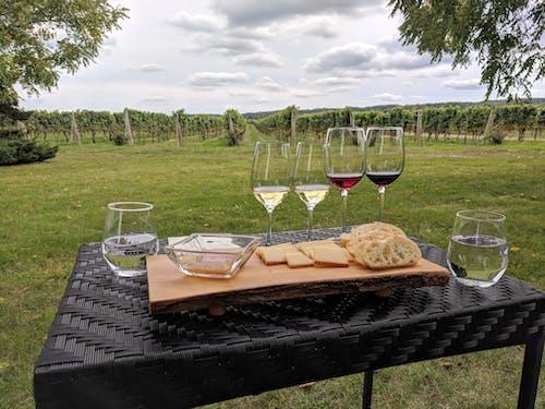 Fotobanka sbezplatnými fotkami na tému Kanada, niagara, ochutnávka vína, syr