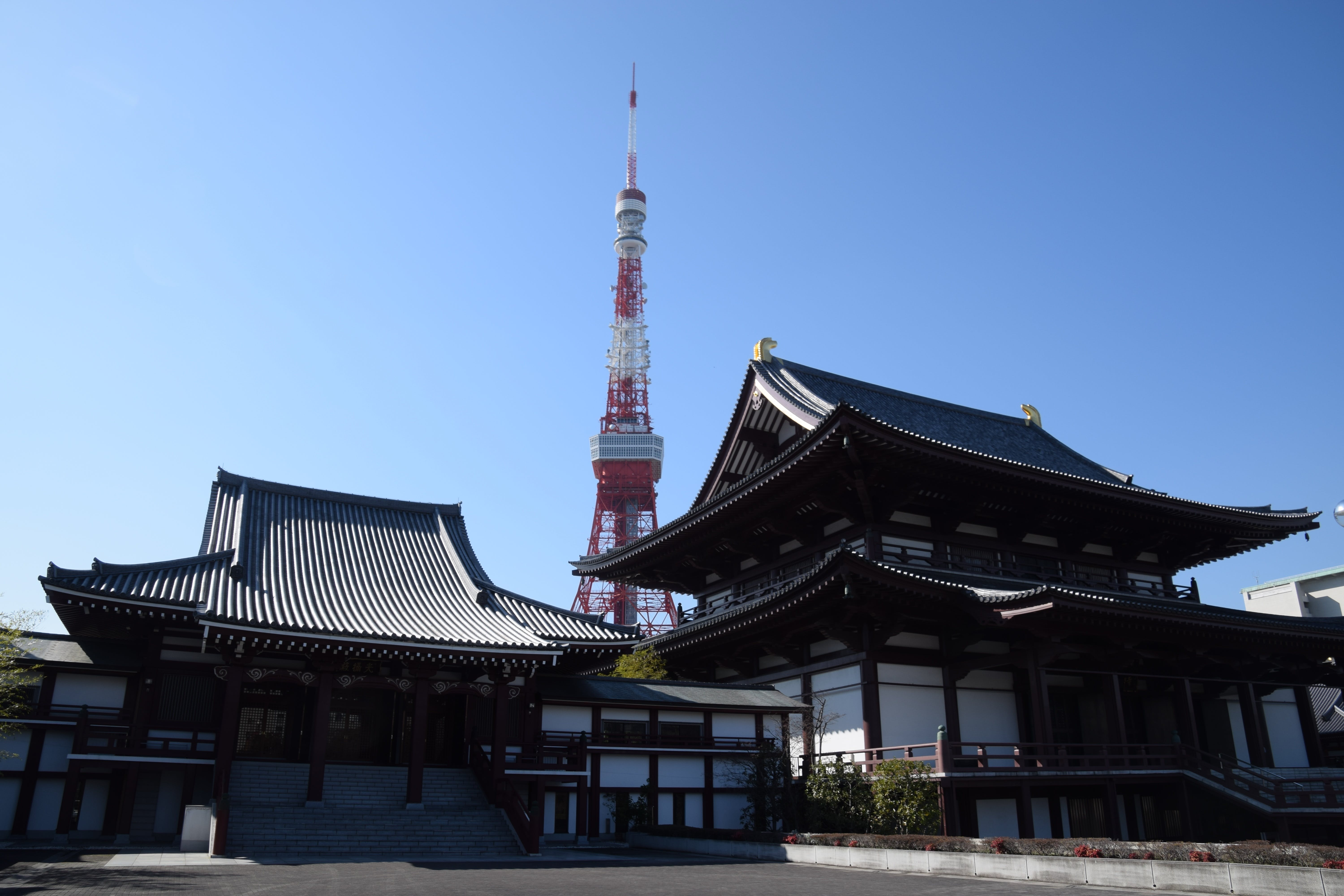 Tokyo Tower Behind Black and White Dojo Building during Daytime