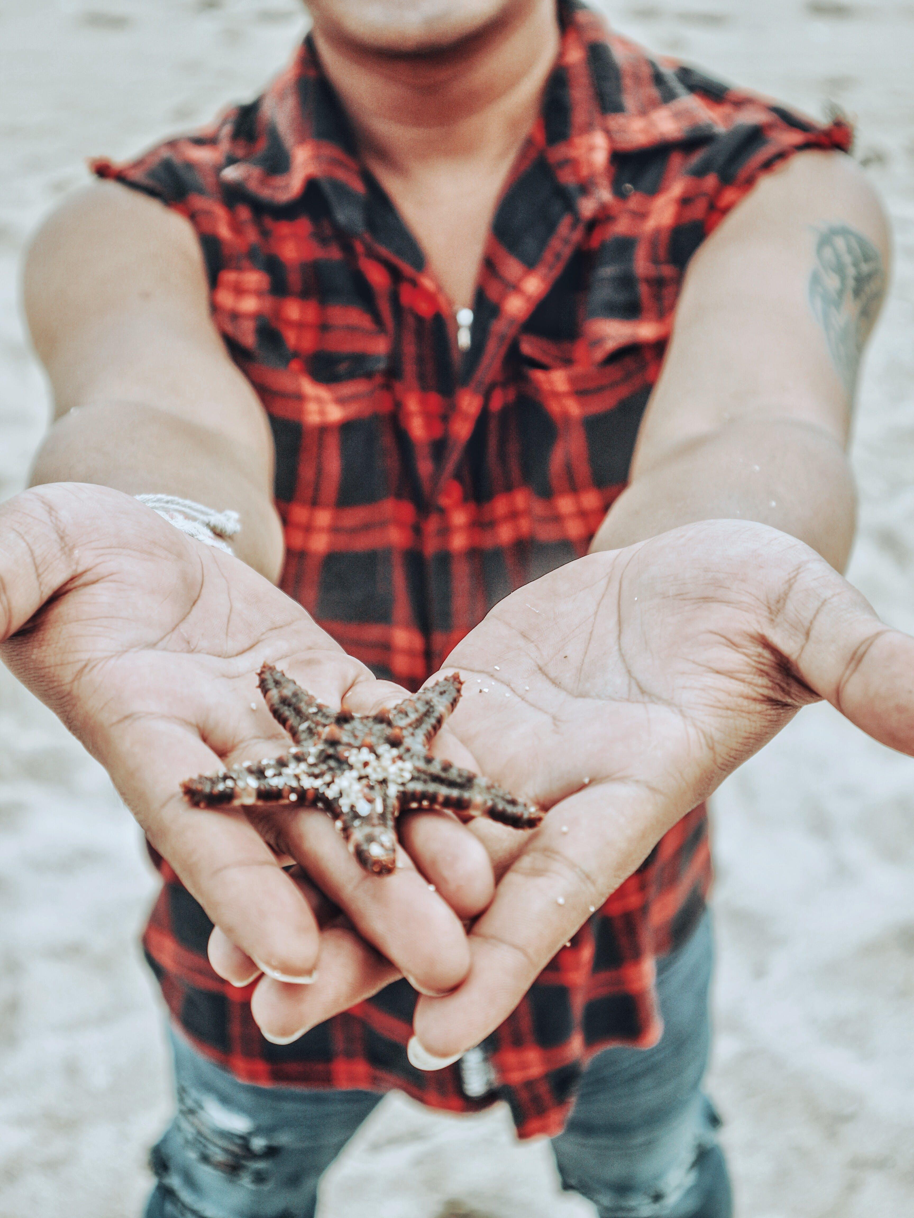 Man Holding Starfish