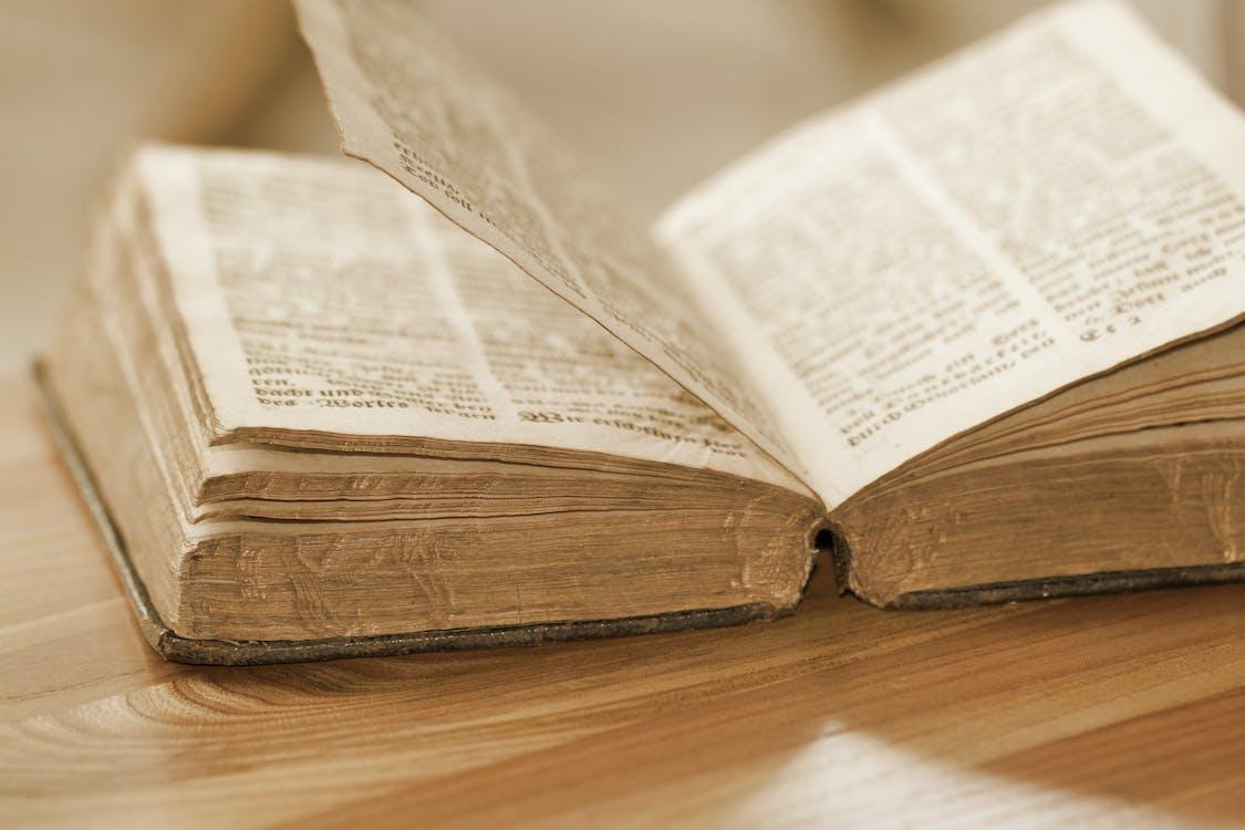 書頁, 知識, 網頁