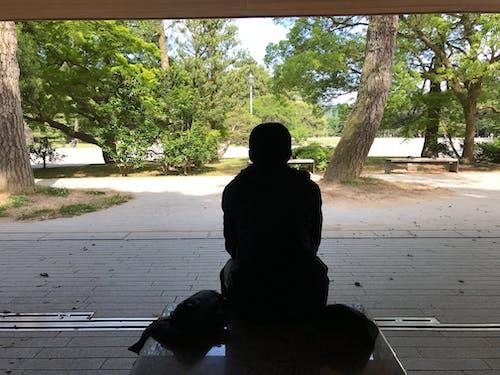 Japonya, manzara, portre içeren Ücretsiz stok fotoğraf